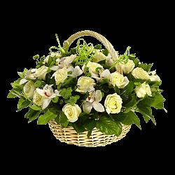 Доставка цветов из варшавы в ташкенте купить многолетние цветы воронеж