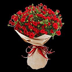 Доставка цветов и подарков на дом в красноярске доставка цветов г кириши